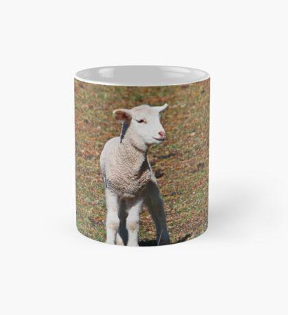 Kleines Lamm verloren Tasse
