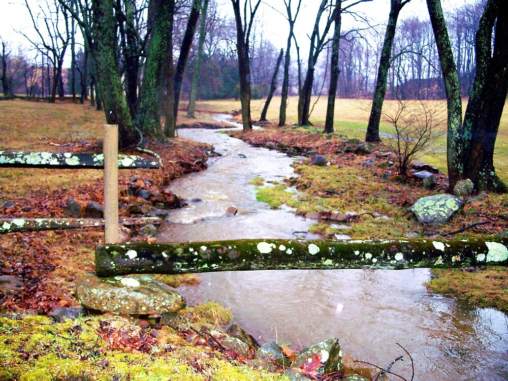 Long and winding stream by Judi Taylor