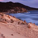 Darby beach - Wilsons Promontory by Tony Middleton