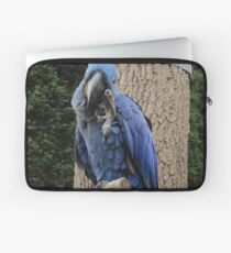Hyacinth Macaw - Busy Being Blue Laptop Sleeve