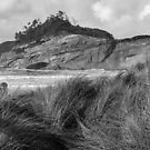 Cape Kiwanda from Bob Straub Park, Monochrome by Zigzagmtart