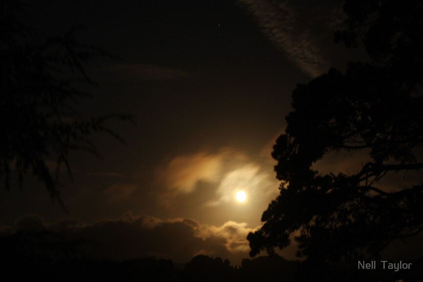 Moon and Venus by Nell  Taylor