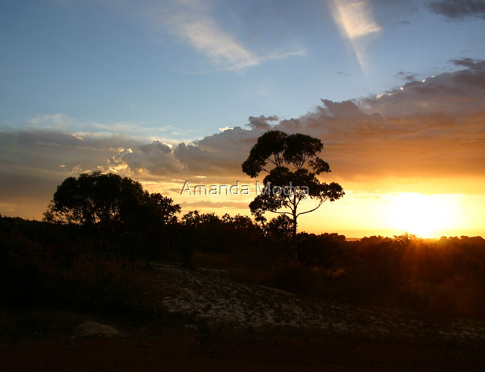 sunset over WA by Amanda Modra