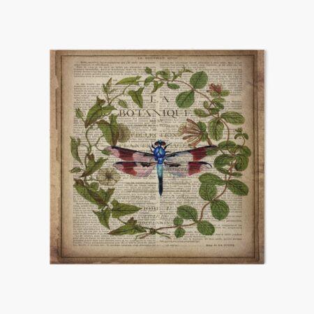 modern leaves botanical art vintage french dragonfly Art Board Print