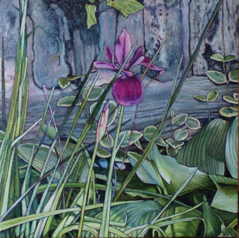 Purple Iris by Eleanor Day