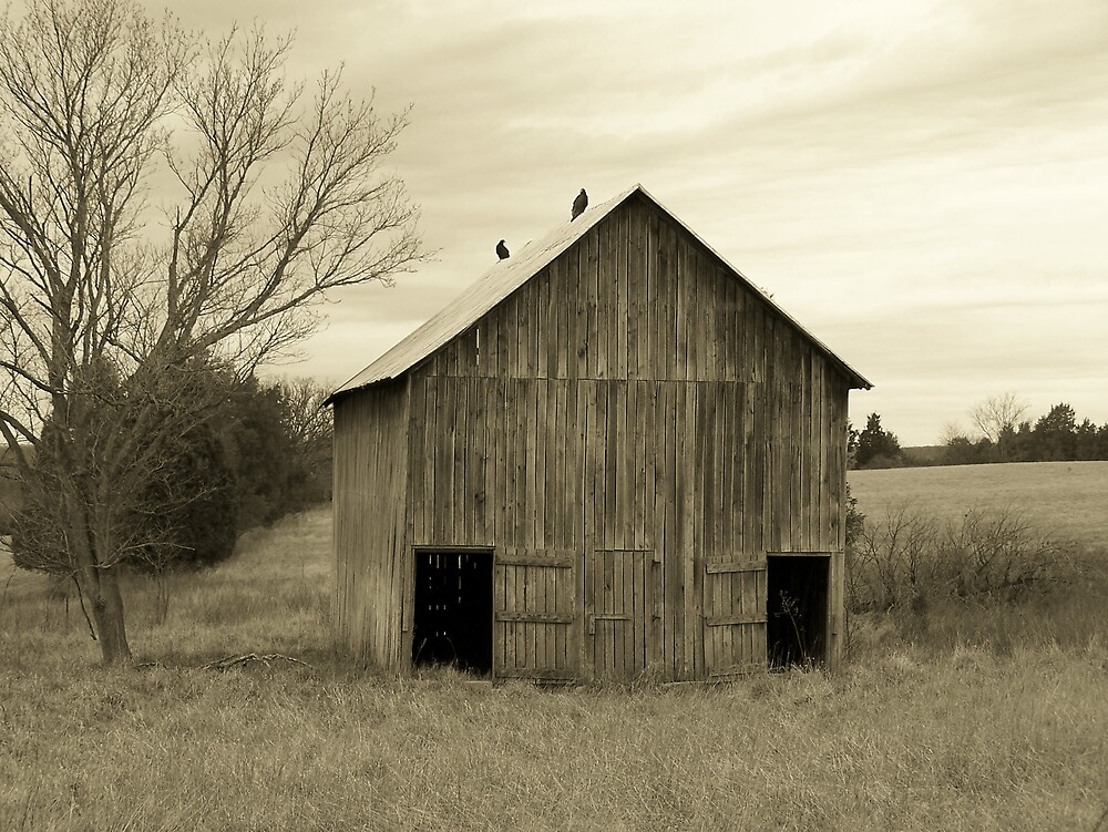 Old Barn by Kristie King