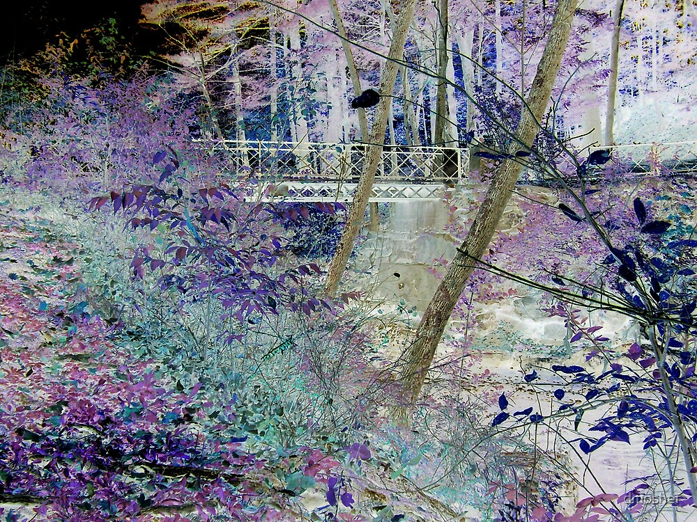 Secret Bridge by dmosher
