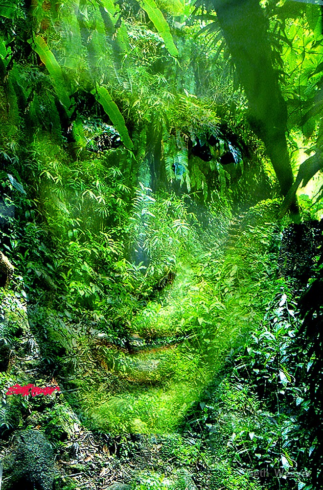 Green Man by Seth  Weaver