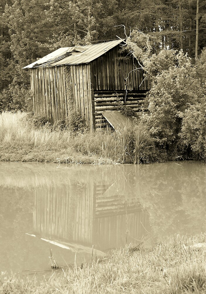 Reflection by Kristie King