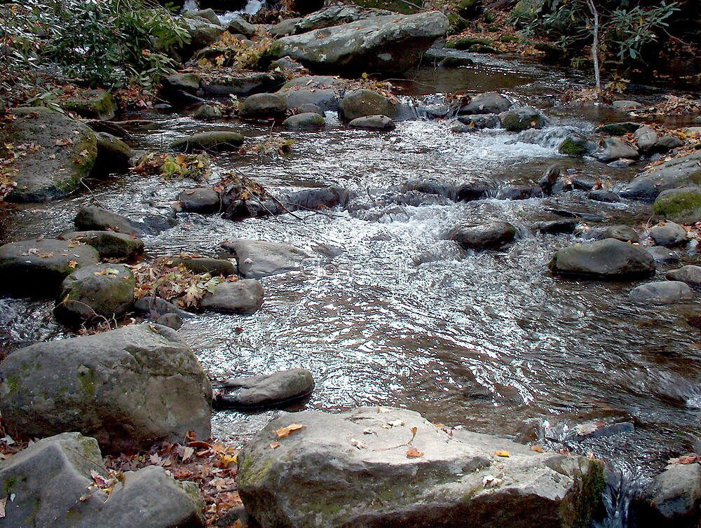 Mountain Fall Colors and Stream by Danny Close
