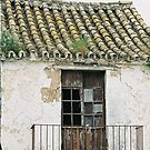 My old door by julie08
