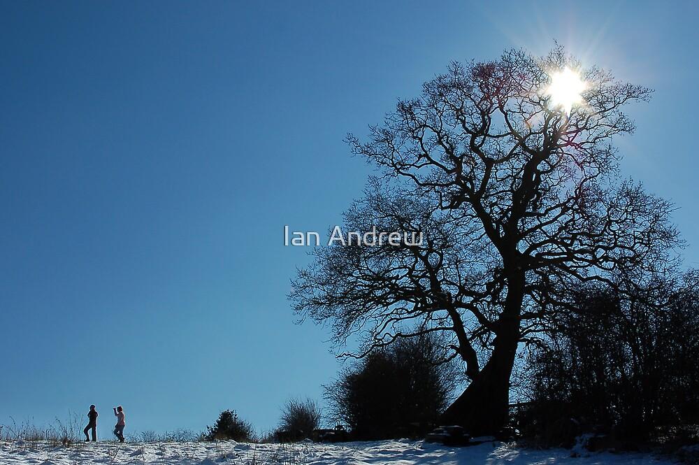 Winter Walk by Ian Andrew