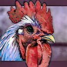 RoOsTeR by blacknight