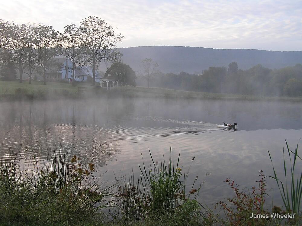 Morning Mist by James Wheeler