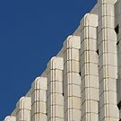 Century Building Skyline by David Thompson