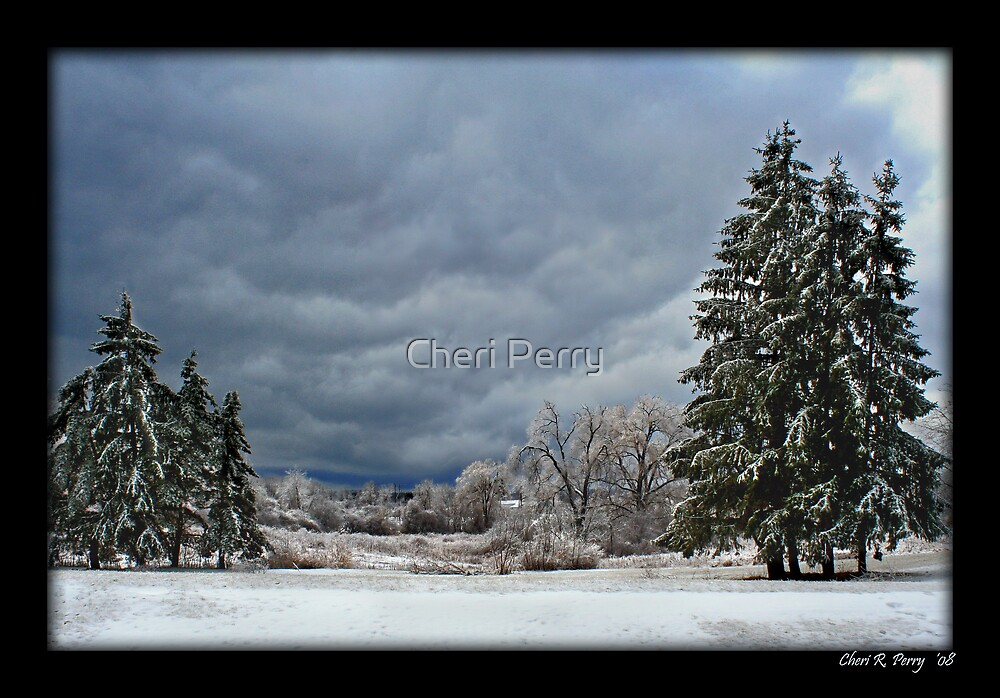 Ice Storm by Cheri Perry