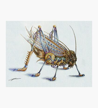 Metal Grasshopper Photographic Print