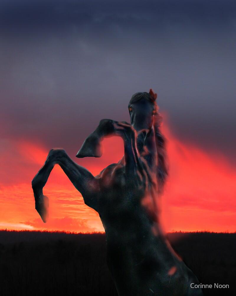 Dark Horse  2 by Corinne Noon