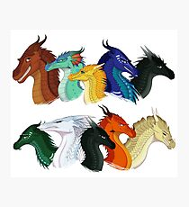 Wings of Fire - POV Characters Photographic Print