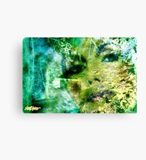 Deep Woods Wanderings Canvas Print