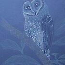 Australian Sooty Owl, colour pencil art by Marta Lett