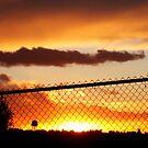 Behind the Fence von Michelle Boyer