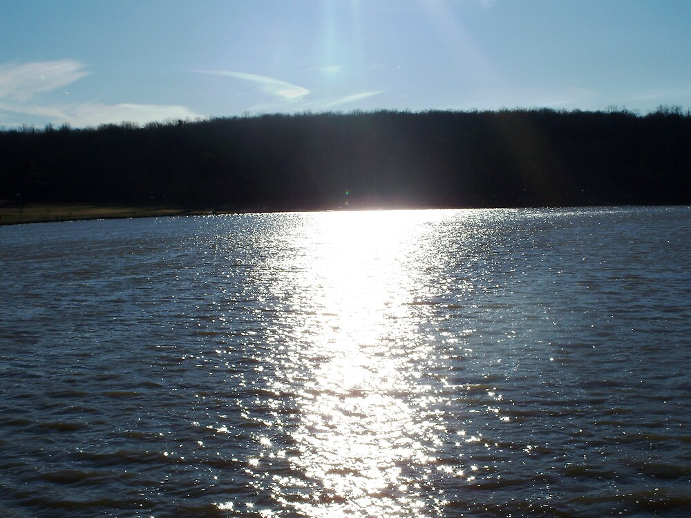Sunlight on the Lake by Judi Taylor