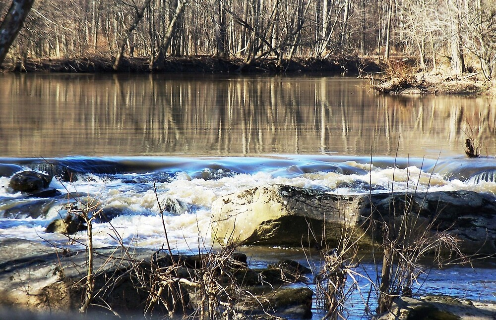 Smooth as silk reflections by Judi Taylor