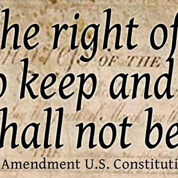 The 2nd Amendment by ayemagine