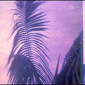 palmy balmy by JuileeP