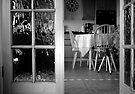 Missing - one tiny photographer by missmoneypenny