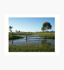 Lake Mary, Central Queensland Art Print