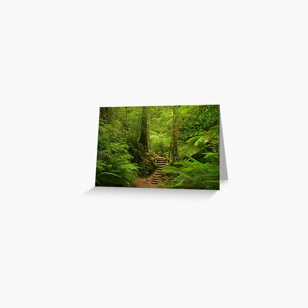 Magic Rainforest Greeting Card