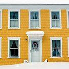 Winter Calls at the Summer Door by Wayne King