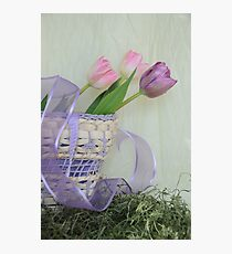 Spring Rewards Photographic Print