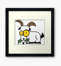 funny goat Framed Print