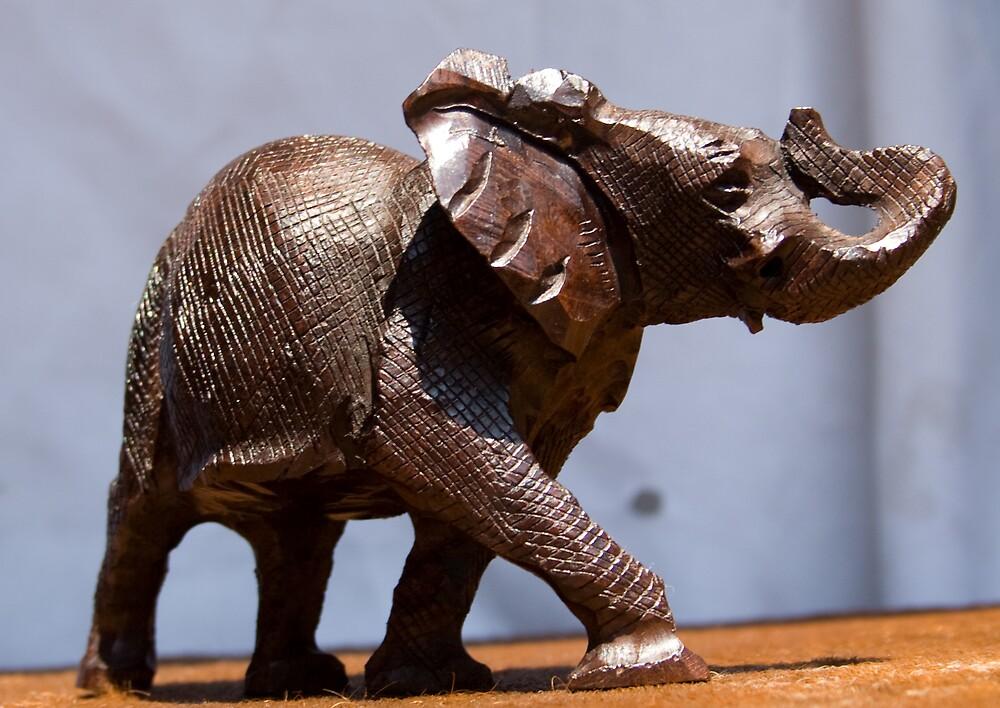 Big Five - Elephant by Paul Lindenberg