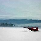 Waiting on Summer - Red Plane on Winter Airfield by Wayne King