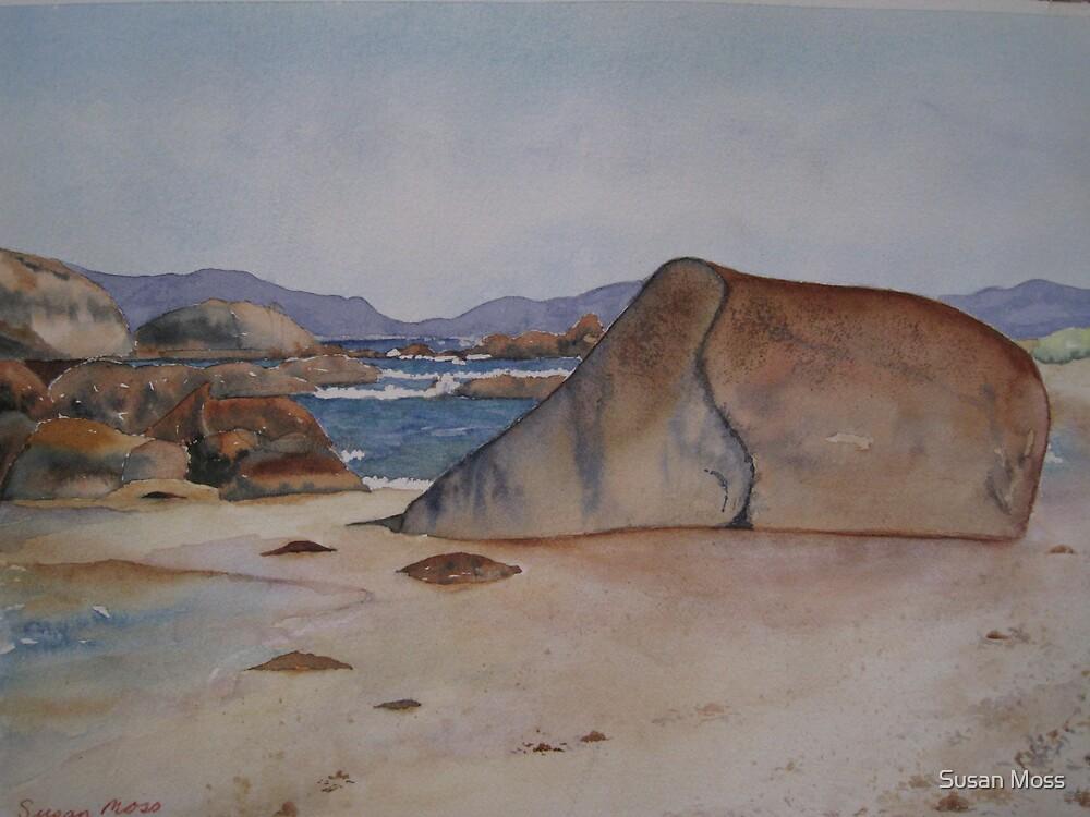 Big Rocks by Susan Moss