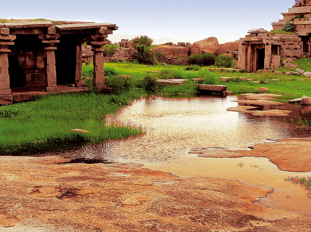hampi pond temple by neil davis