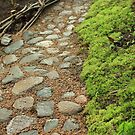 Cobbled pebble footpath by mrivserg