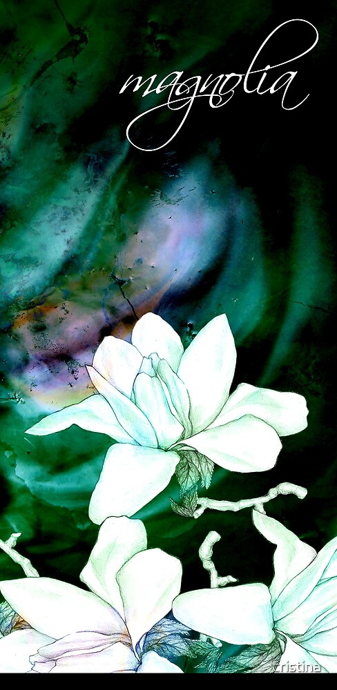 magnolia love by cristina