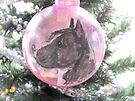 My Favorite Christmas Bulb by Ginny York