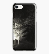 Winter Solstice Evening Trees 2014 iPhone Case/Skin