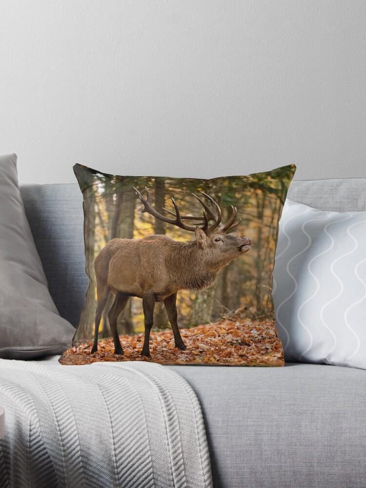 Bull Elk by Michael Cummings