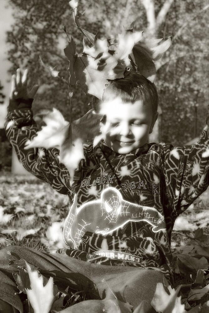 Autumn Fun by Deidre Cripwell