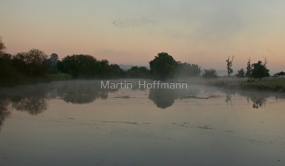 morning fog over lake by Martin  Hoffmann