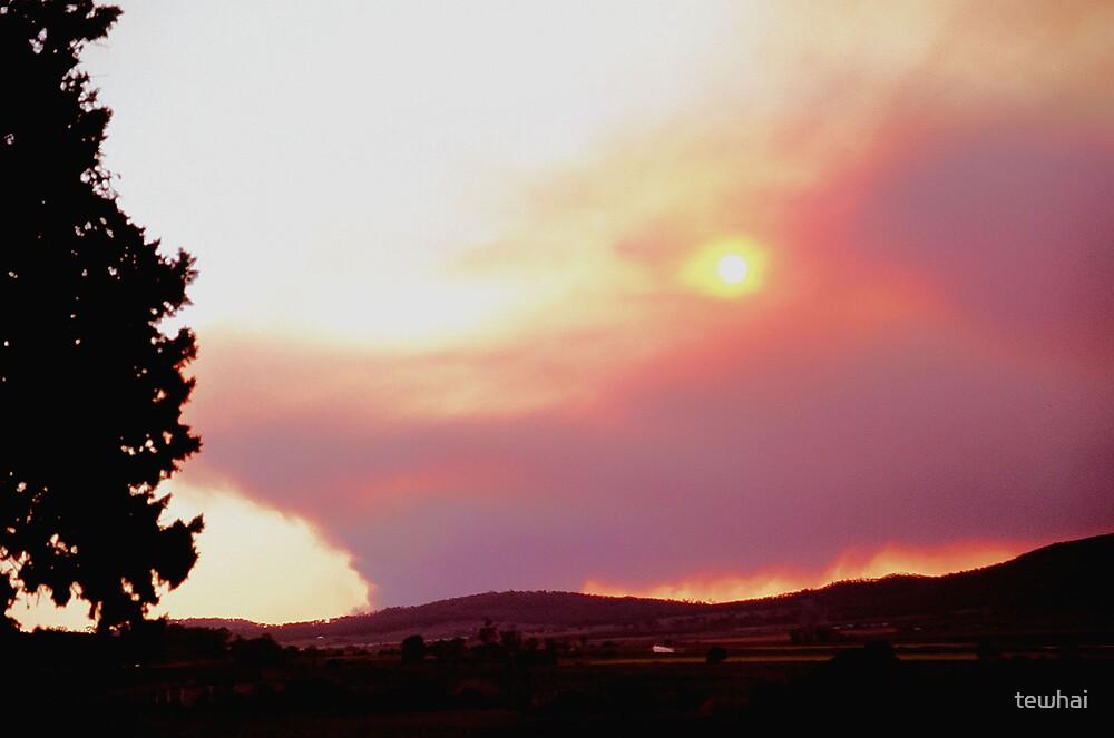 Bush Fire by tewhai
