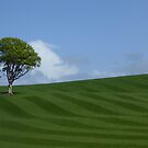 Gleaming Field and Tree by George Crawford