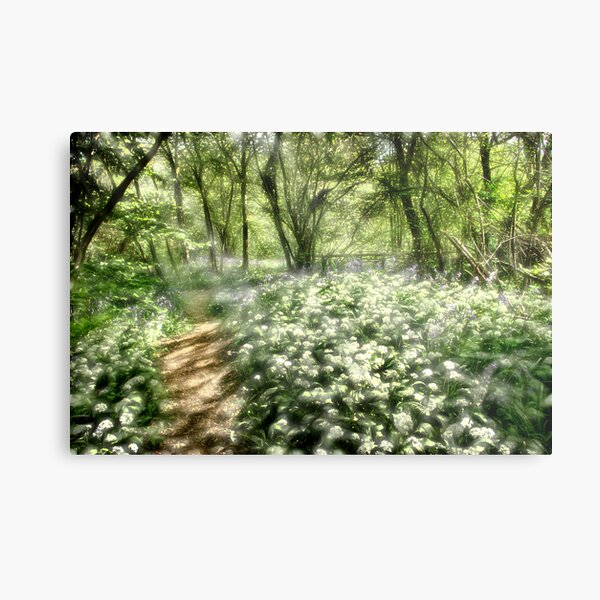 The Dell Metal Print